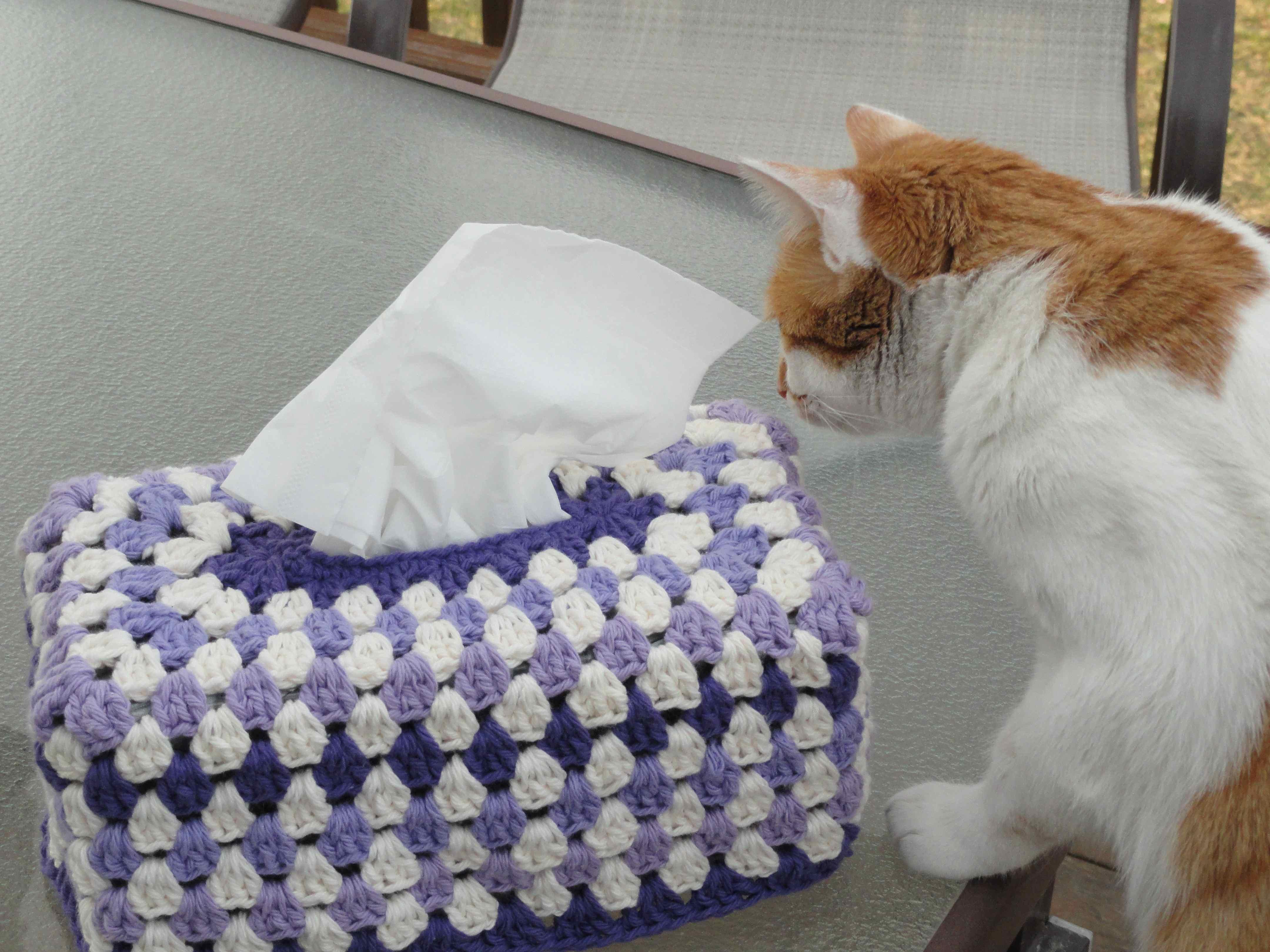 Crochet Granny Tissue Box 21 Yarnchick