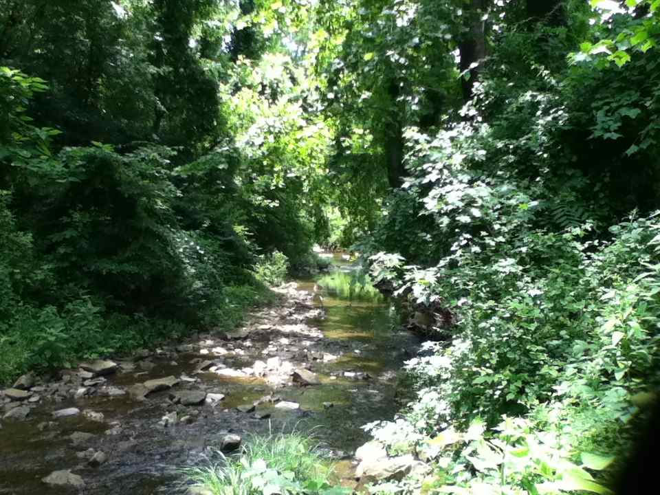 our creek 2014
